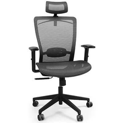 FlexiSpot Ergonomic Executive Office Chair