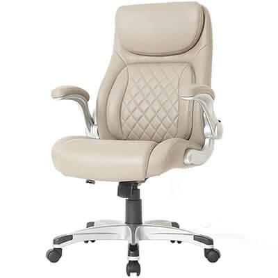 NOUHAUS Posture Ergonomic Office Chair